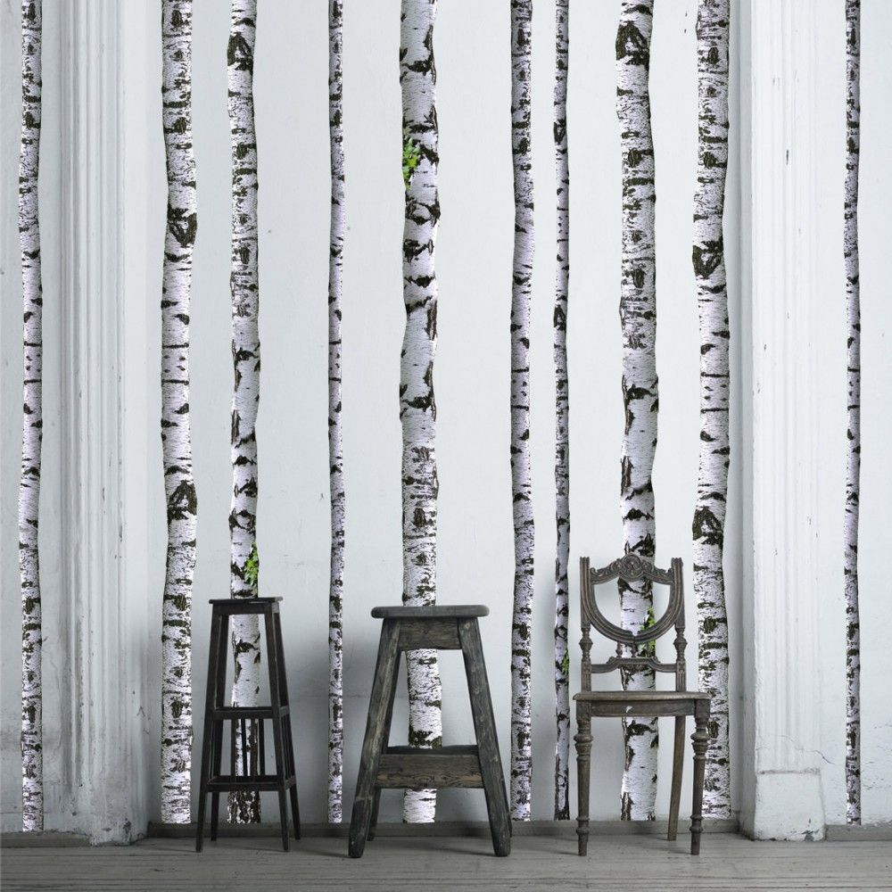 wall decals super real birch trees tree wall wall colors and birch tree wall stickers just need to decide on wall color
