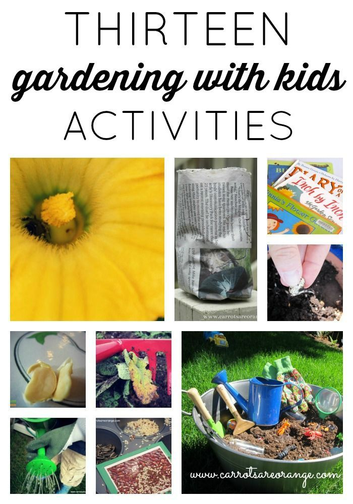 Garden Activities for Kids from @Marnie of Carrots Are Orange