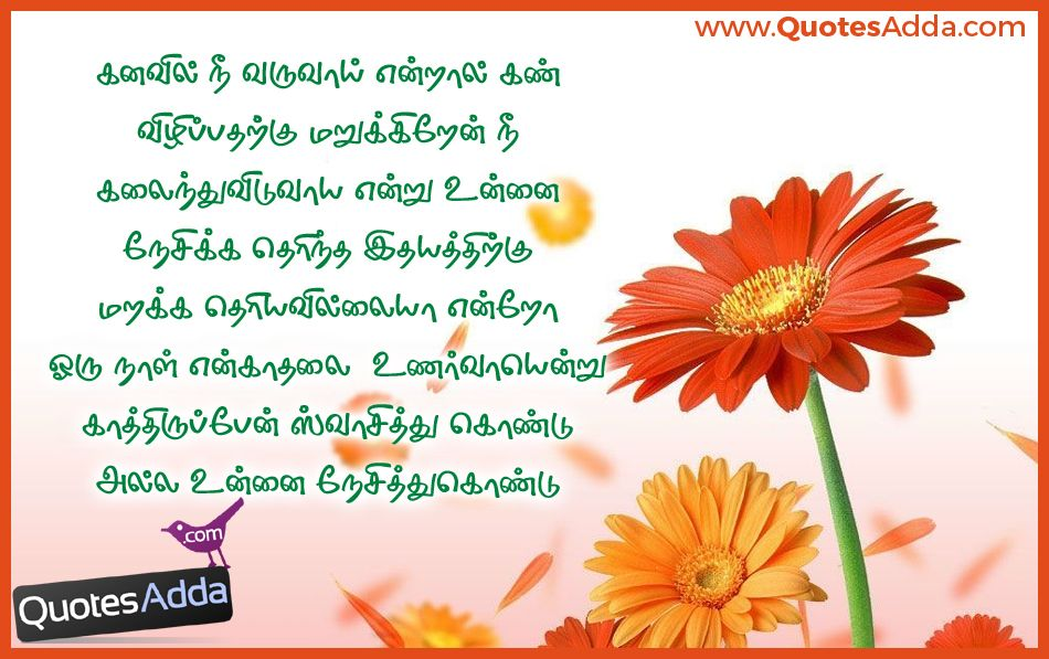 Here is a Latest Tamil Language love Failure Quotes and nice Images online,  best Tamil Language Best Super Love Lines for Lovers, Romantic Love sms and  Love