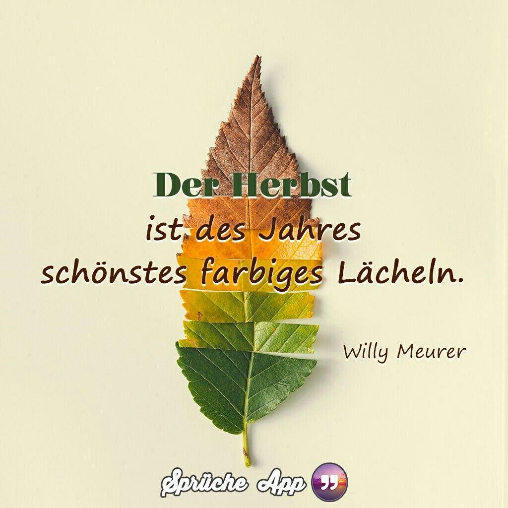 Pin Von Anne Sanavia Auf Bilder Herbst Spruch Spruche Zitate Herbst