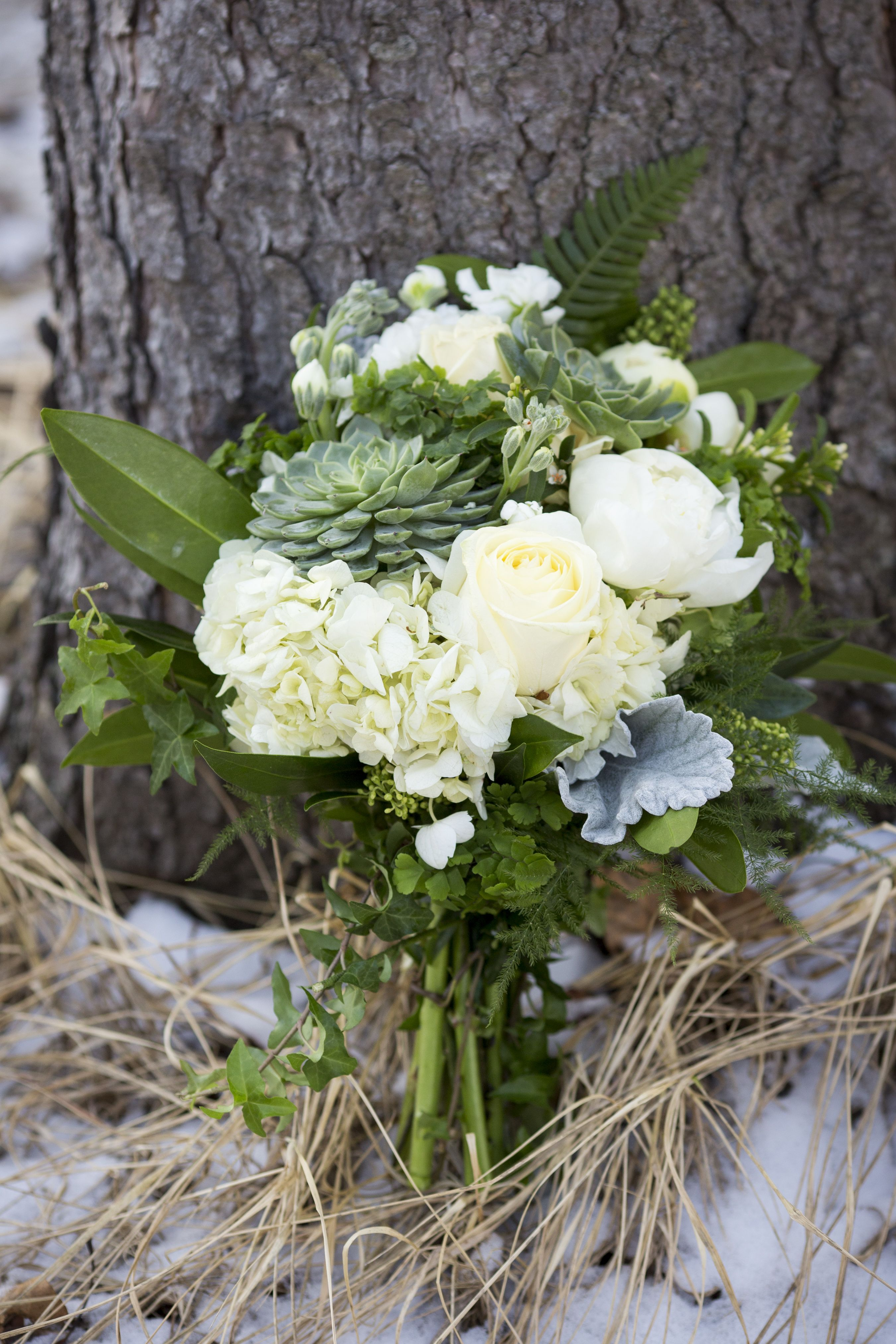 Bridal bouquet with succulents, roses, peonies,hydrangea, stocks, ferns, ivy and dusty miller. Designed by Forget-Me-Not Flowers Banff. Photo by Kim Payant Photography. http://www.kimpayantphotography.com/