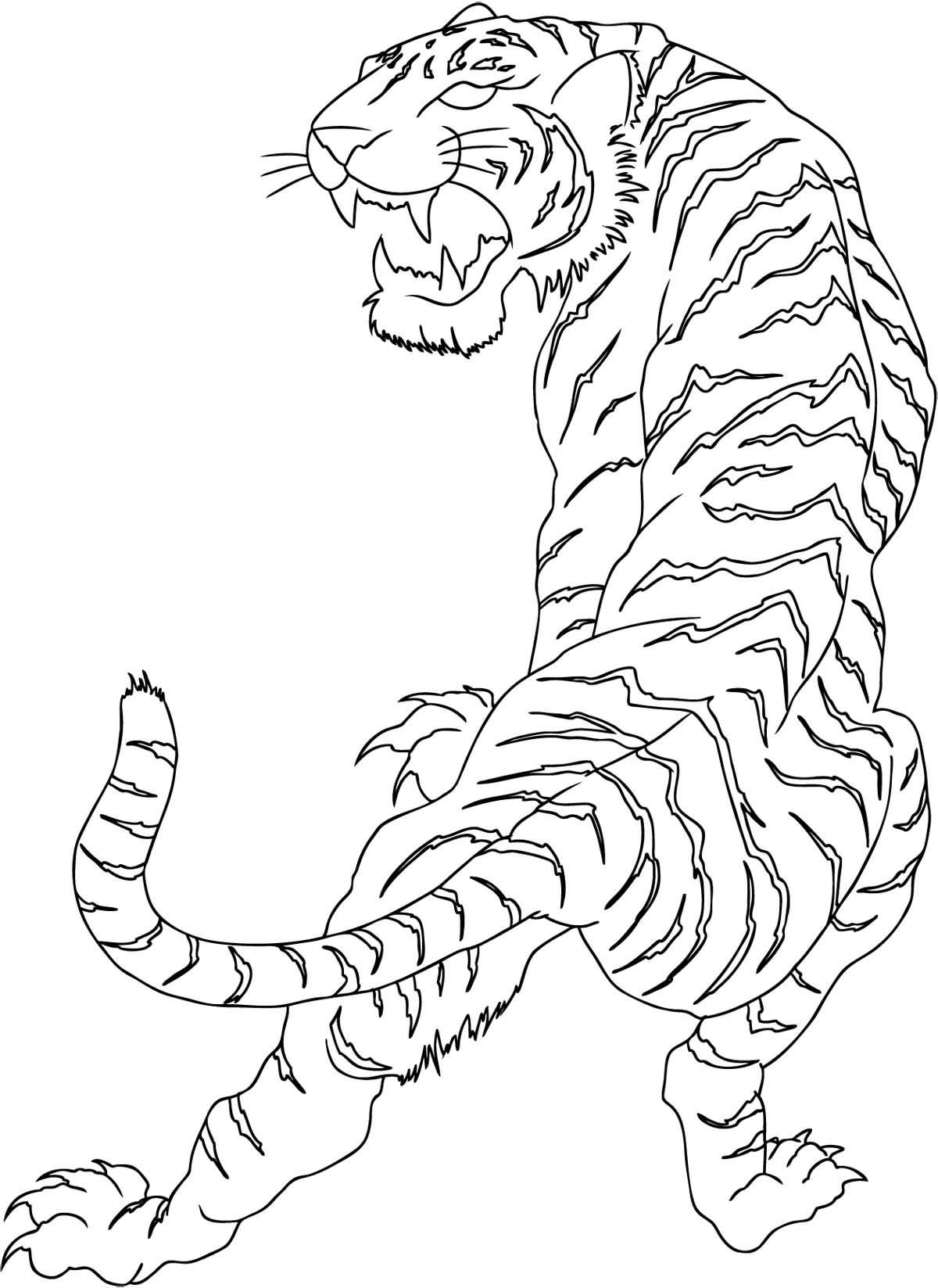 white tiger tattoos - 736×1010
