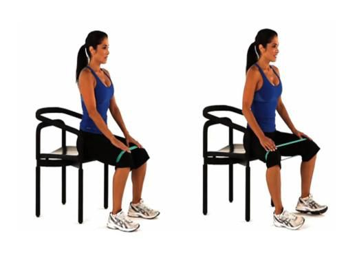 Image result for seated hip abduction with band