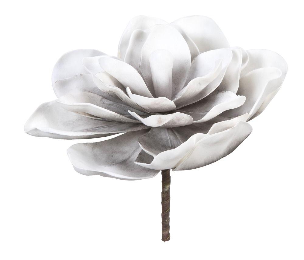 Bloem Magnolia