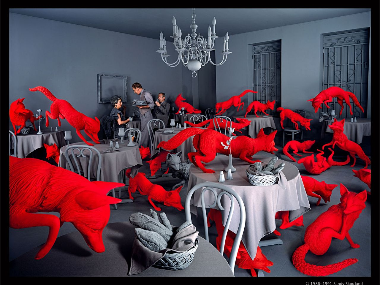Best Sandy Skoglund Images On Pinterest Photography Bird And - Artist creates amazing fantasy dreamscapes into her small studio without using photoshop