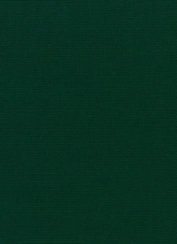 Canvas 5446 Forest Green Green Texture Dark Green Background Solid Color Backgrounds Dark green color background images