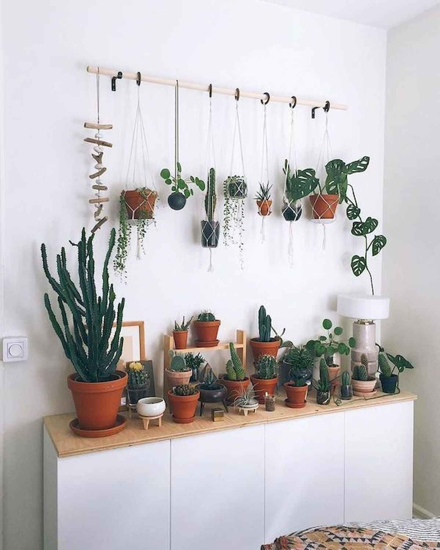 50 Best Indoor Garden For Apartment Design Ideas And Remodel Apartment Design Indoor Garden Garden