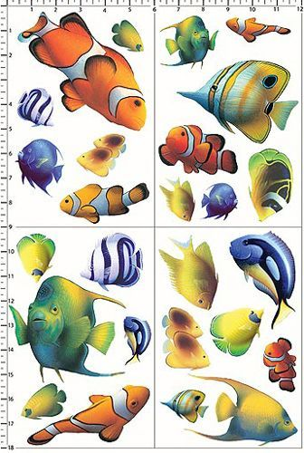 √ aquarium fische malen kinder  fischlexikon