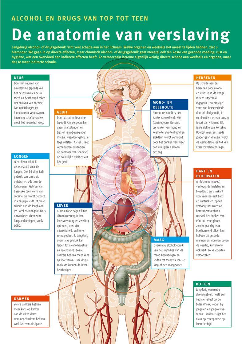 Novadic-Kentron - Infographic De anatomie van verslaving ...