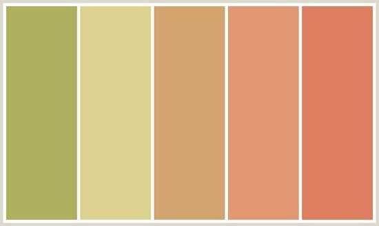 Orange Color Combinations Terracotta Coloratching Interior Design Schemes