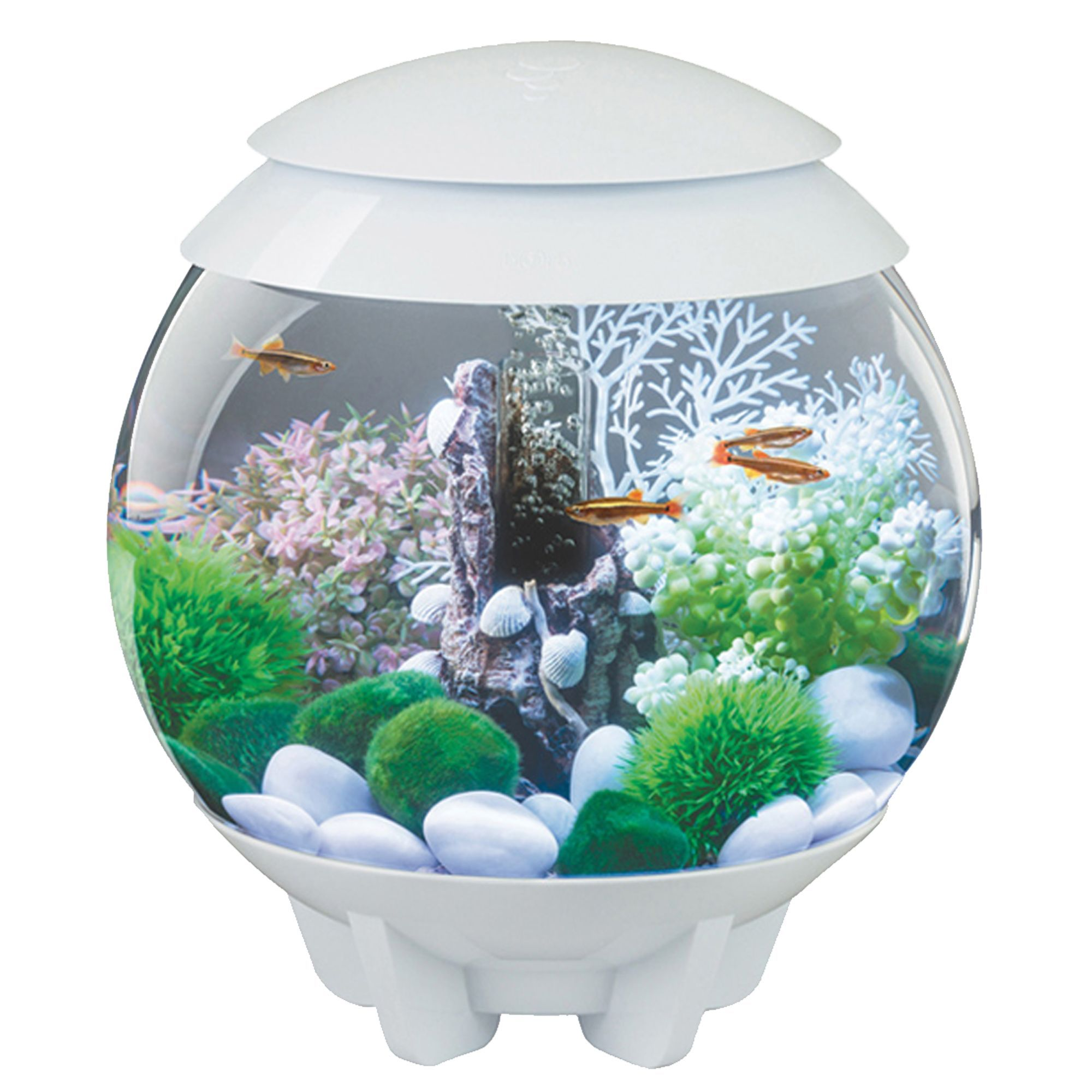 biOrb® HALO 4 Gallon LED Aquarium Amazing aquariums