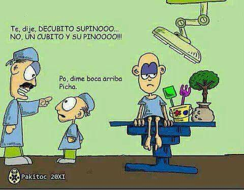 Chiste jaja | ~Anatomía Humana~ | Pinterest | Jaja, Chistes y ...