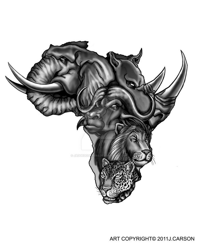 b17bf3597 Africa's Big Five... Tattoo design Commissioned by: Gary Stanyer ----------  Digital Illustration done on PhotoShop CS5. with Wacom Cintiq Tablet.