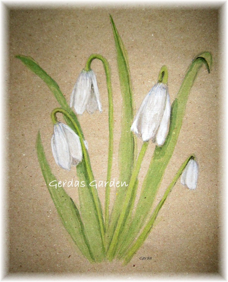 Snowdrop Watercolor Print 5x7 January Birth Flower 15 00 Handmade Art Crafts And Unique Gifts By Ge January Birth Flowers Birth Flowers Watercolor Print