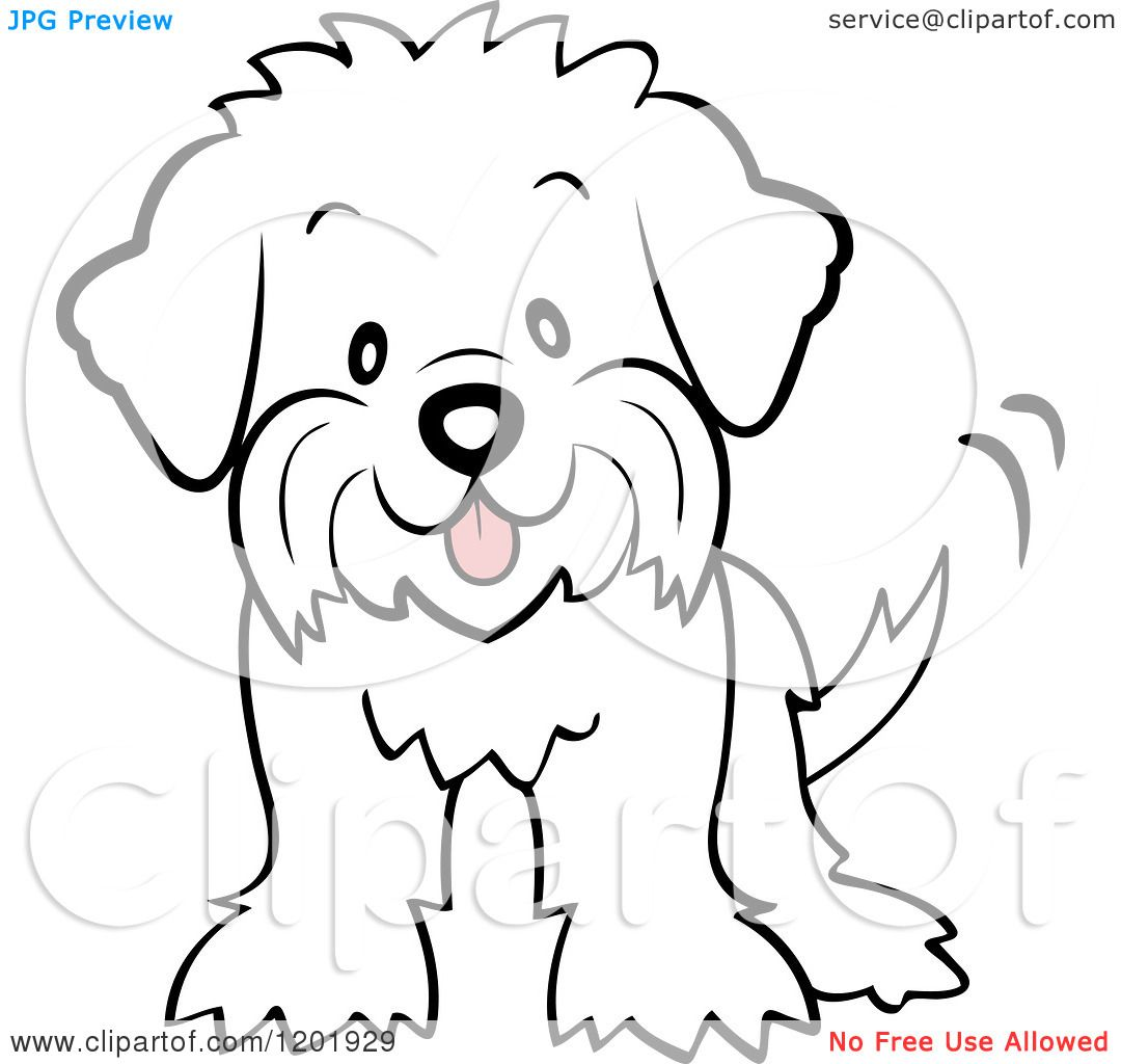 Cartoon Of A Cute Maltese Puppy Dog Wagging His Tail Royalty Free Vector Clipart By Cartoon Character Studio 1201929 Puppy Cartoon Puppy Clipart Puppy Art