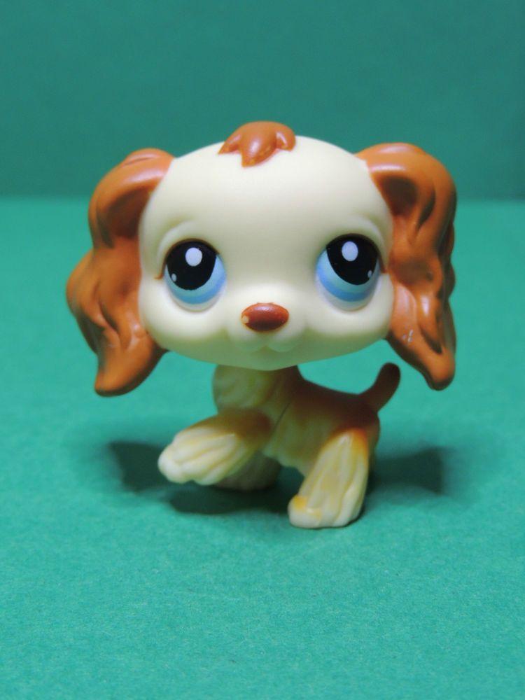 298 chien dog epagneul spniel yellow brown cocker lps - Chien pet shop ...