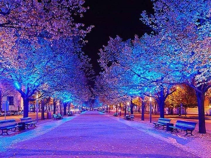 Timeline Photos Heart Touching Images Facebook Winter Scenery Scenery Pictures Winter Pictures