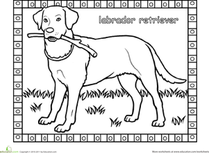 first grade animals worksheets labrador coloring page