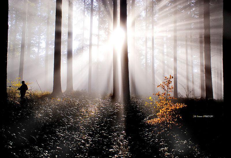 Haya ante el resplandor by Jabi Artaraz
