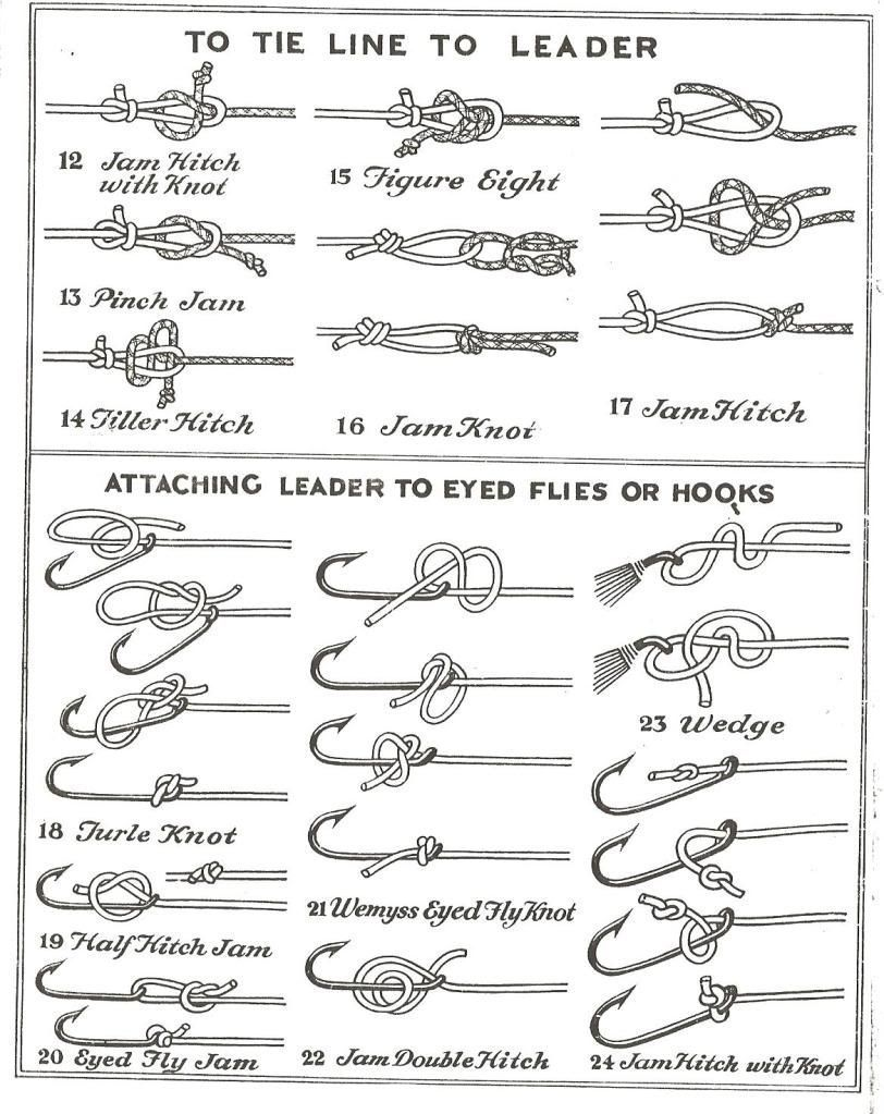 This is an image of Impertinent Fly Fishing Hook Size Chart Printable