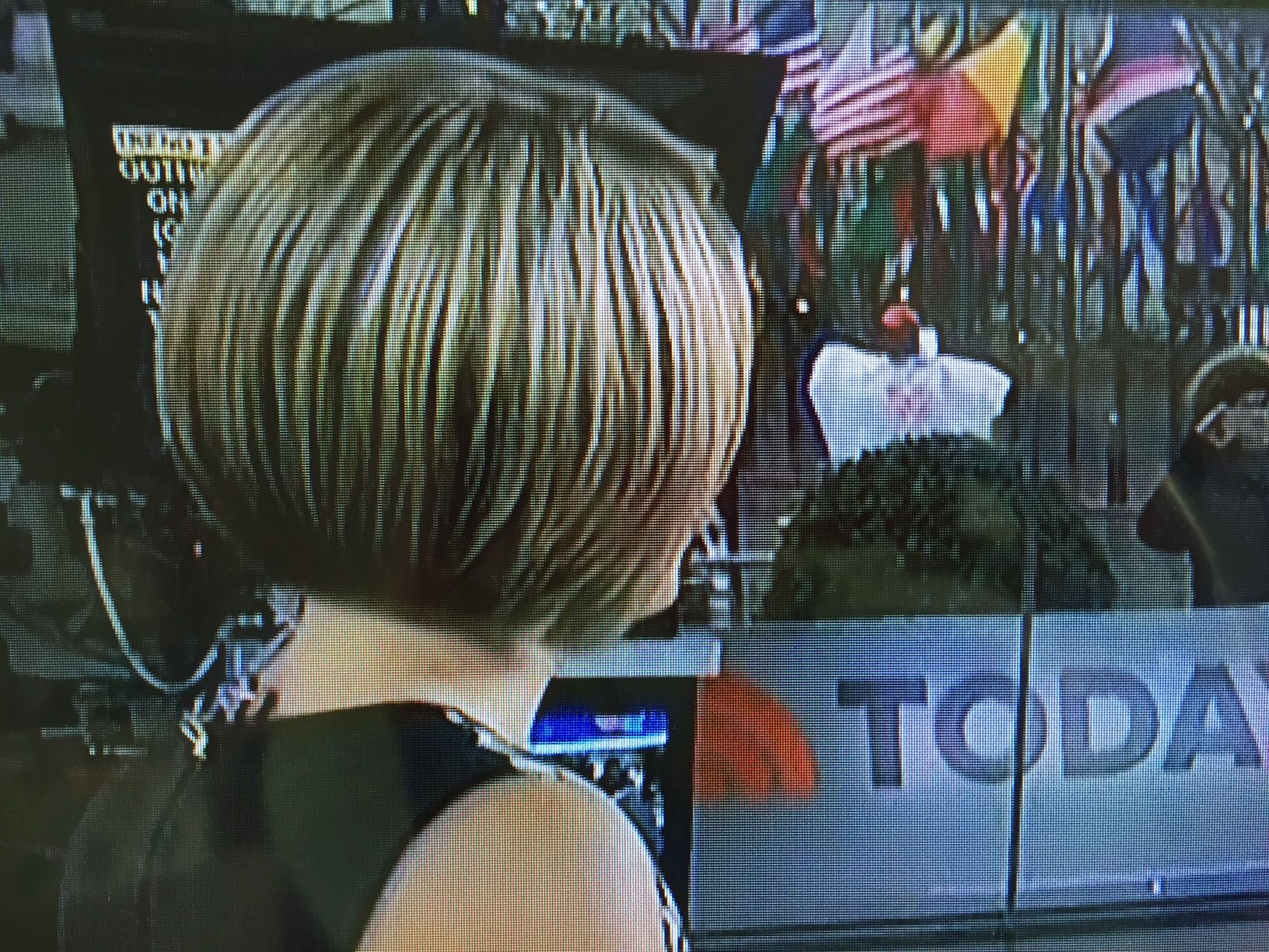Dylan Dreyer On Today 4 6 17 Back View Of Her Gorgeous Haircut