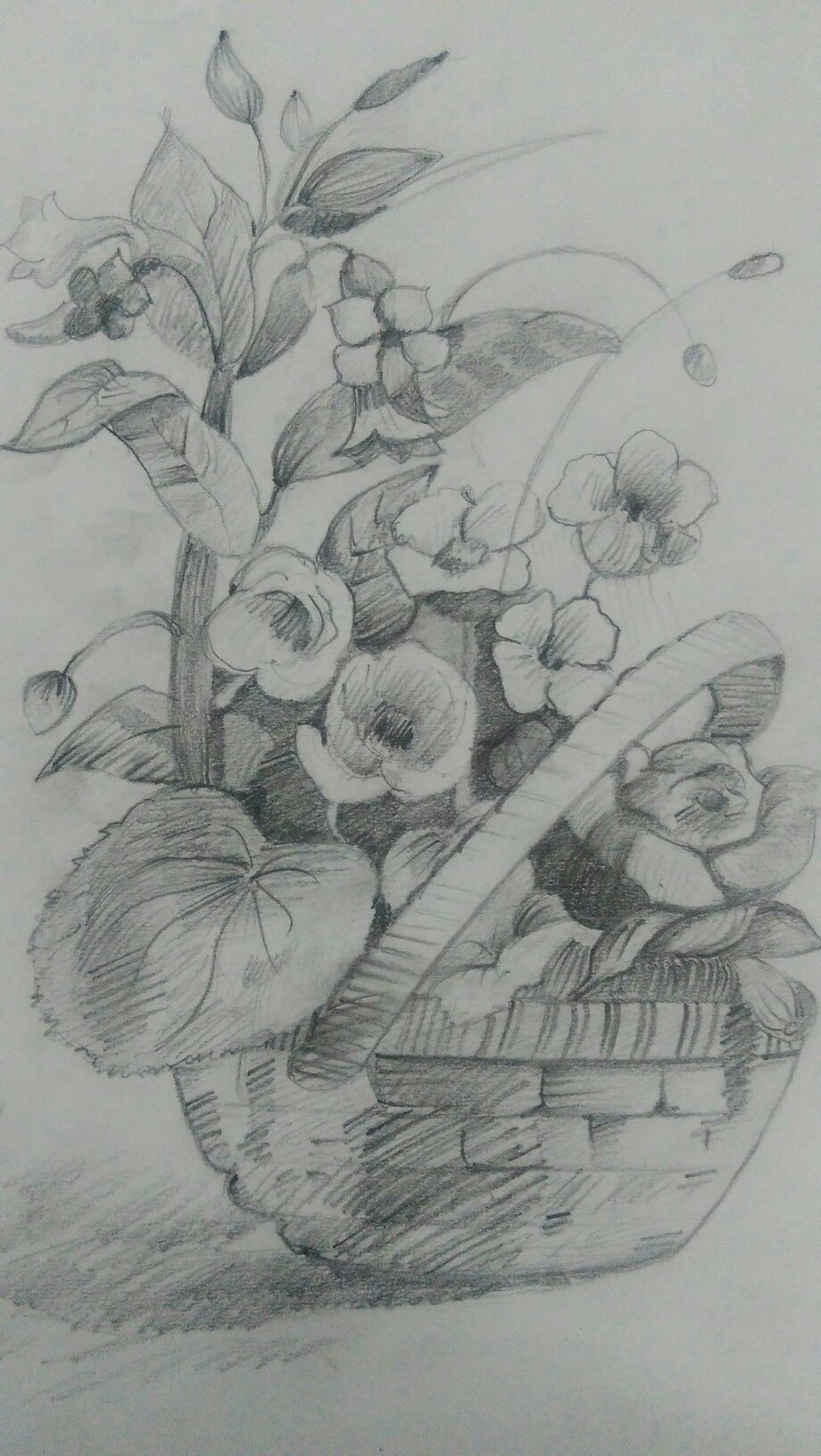 Still Life Shading Drawings Pencil - 0425