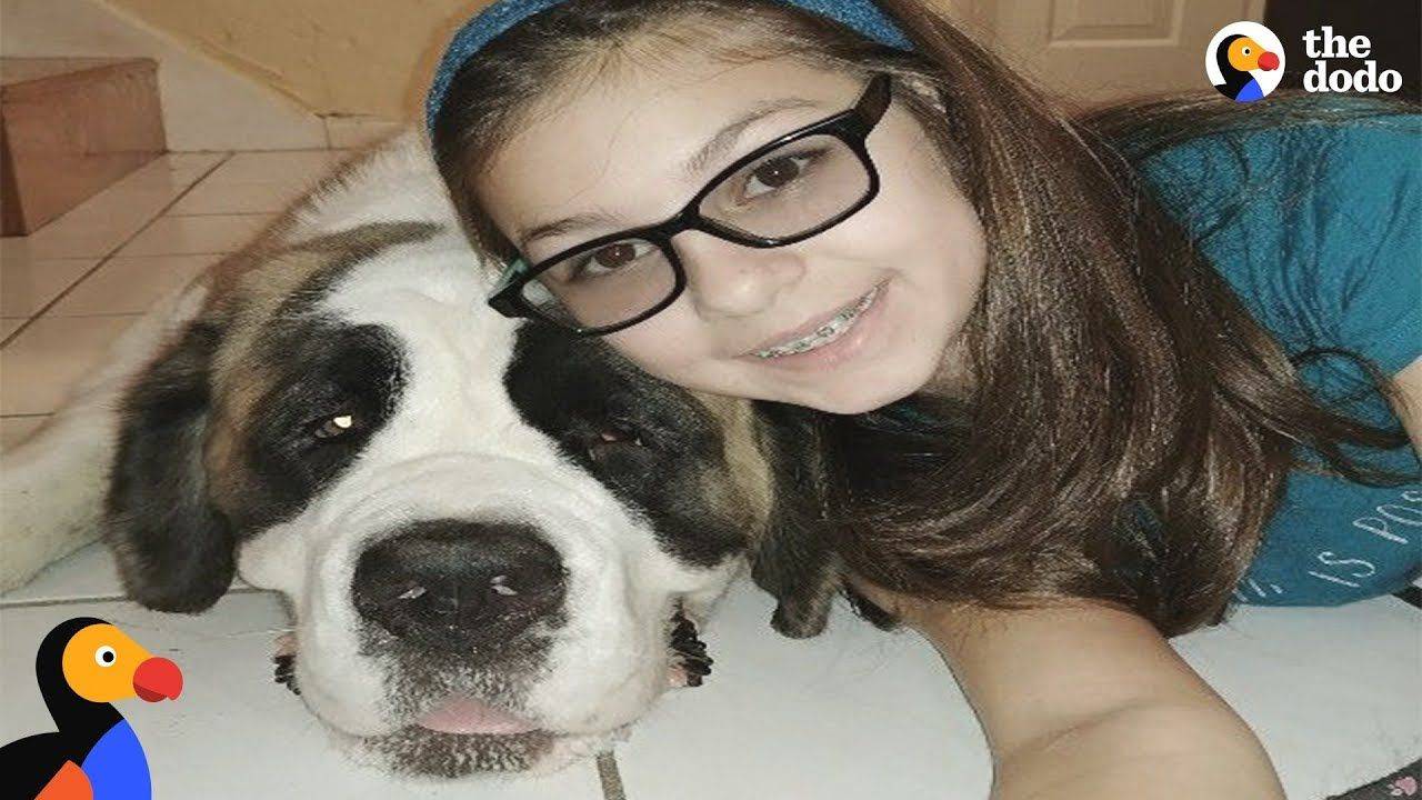 Girl Losing Vision Was Lonely Until She Met This Dog The Dodo
