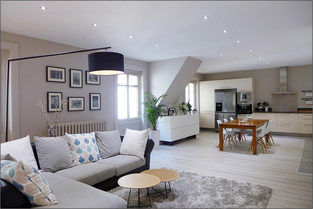 Idee Couleur Dans Piece Ouverte Cuisine Salon Salle A Manger en 2020   Déco maison, Décoration ...