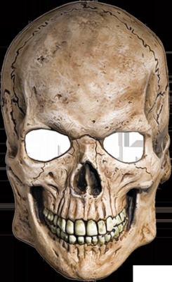 Skull Mask Transparent Background Skull Search Png Image