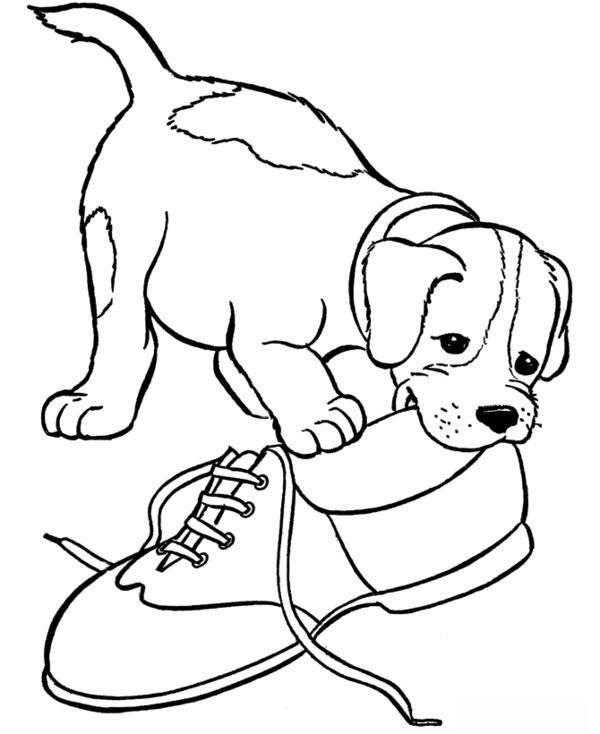Dog And Puppy Coloring Pages Picture 40 550x672 Picture Puppy Coloring Pages Dog Coloring Page Dog Template