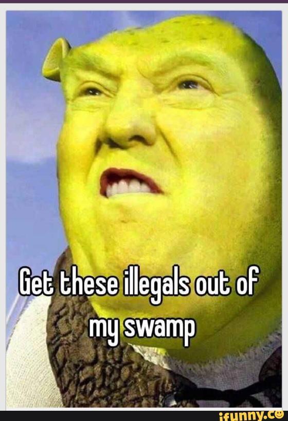 5f171d1f7ff1db77e528741aef212787 donald trump memes google search radical memes pinterest