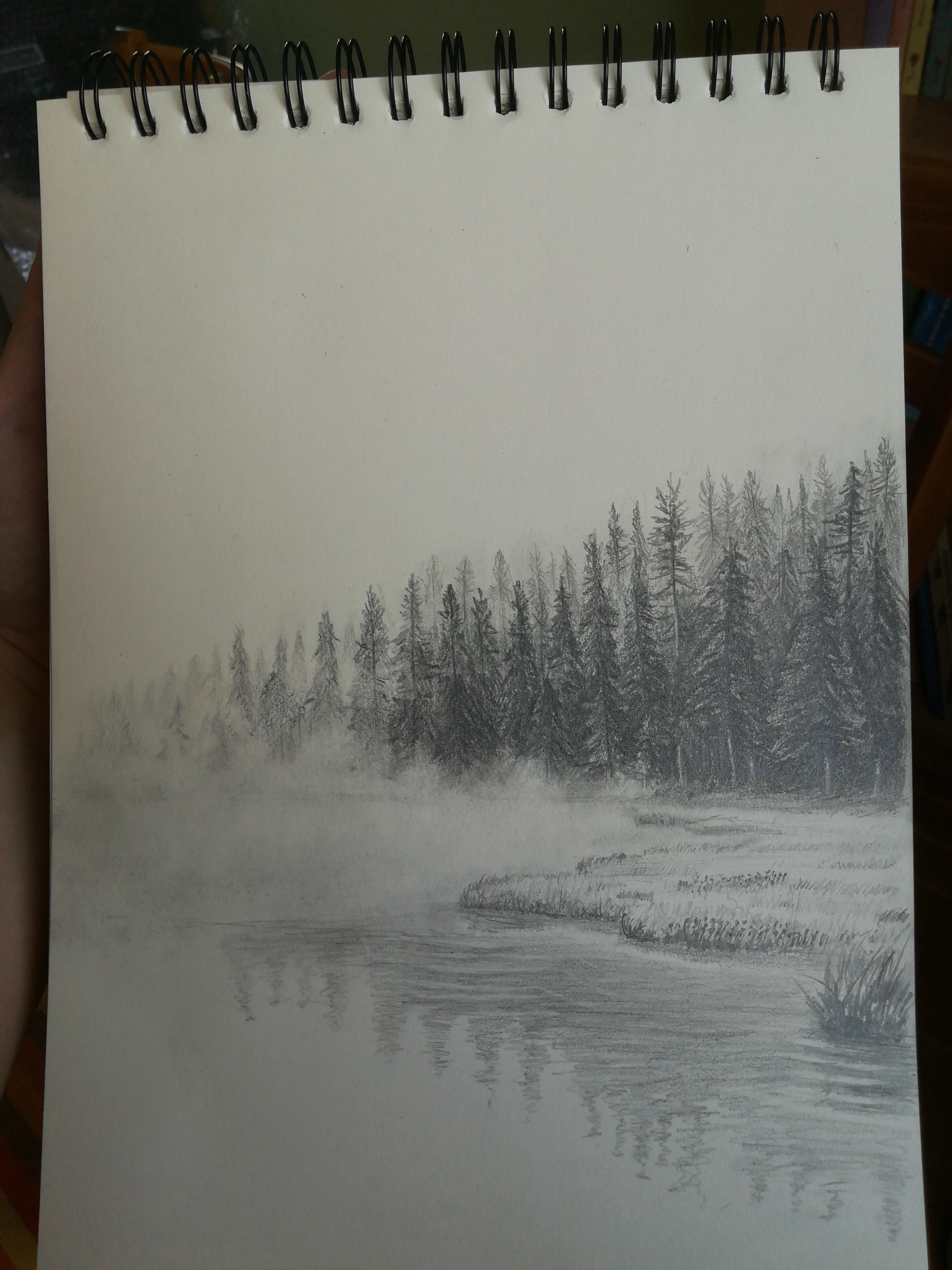 Misty Forest By The Lake Graphite A4 Forest Drawing Pencil