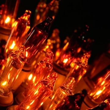 fall harvest string lights 35 mini lights fall colors