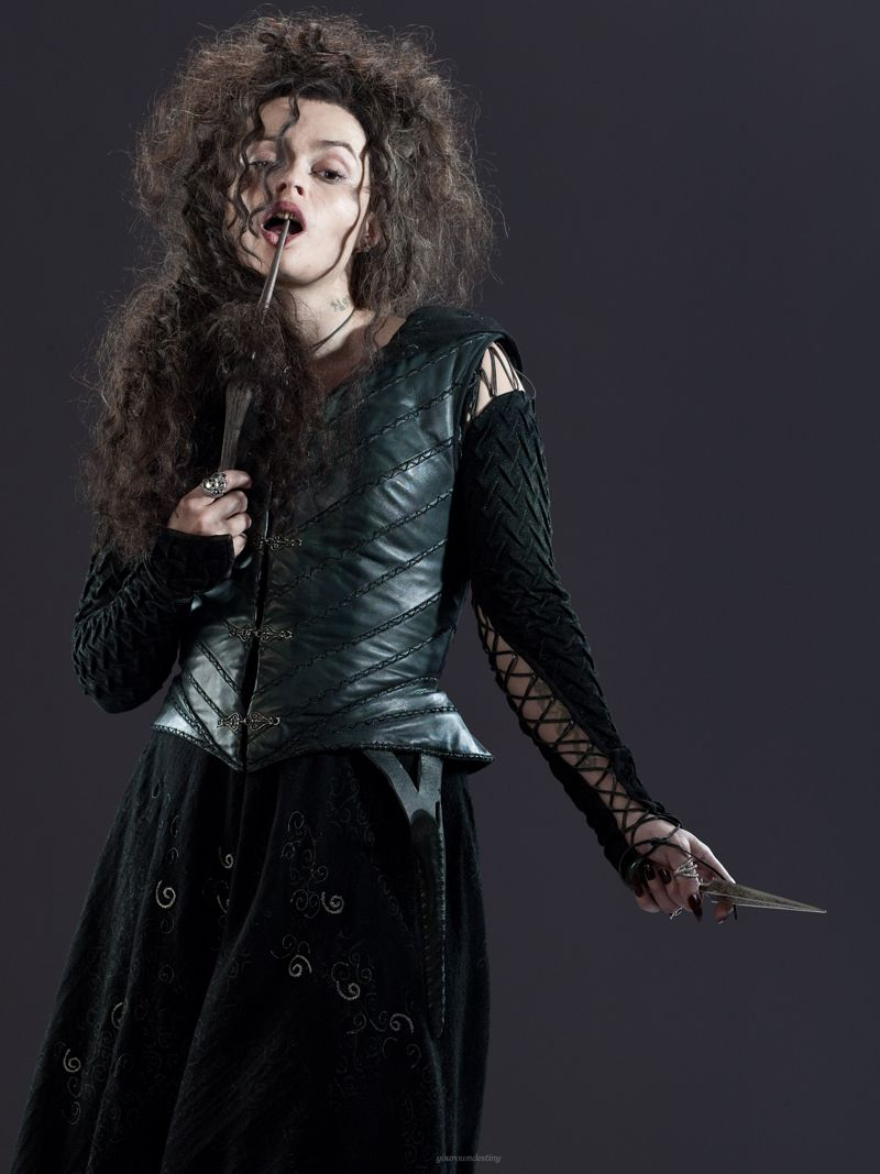bellatrix and malfoys