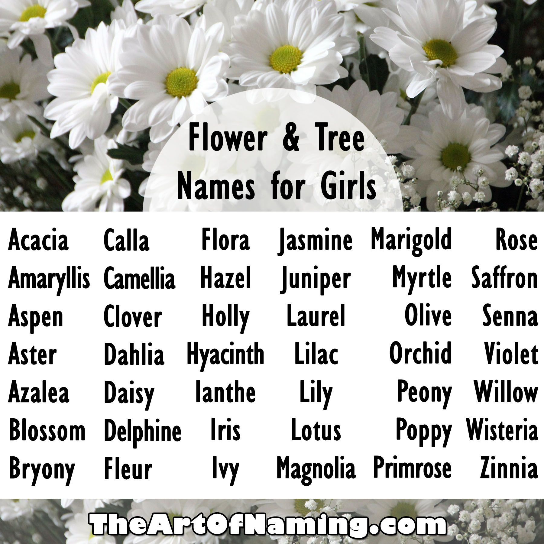 Flower Names For Girls What are your favorite flower or tree names for girls? #babynames Click to view