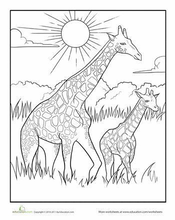 Image result for giraffe black and white | Rose luminárias | Pinterest