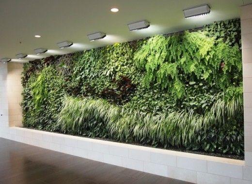 Gardens on the inside #greenckaos