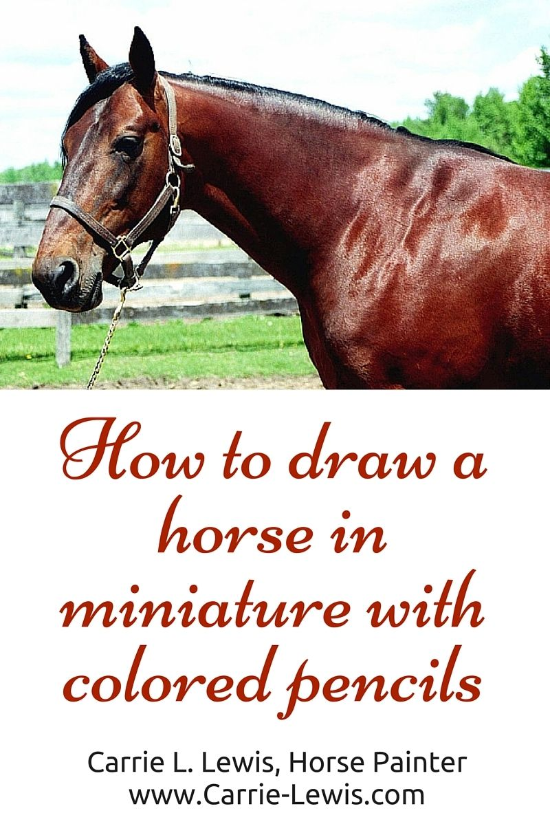 Part 1 Of A Fivepart Demonstration Featuring A Colored Pencil Aceo  Introduction And Under Painting How How To Draw A Zombie Horse