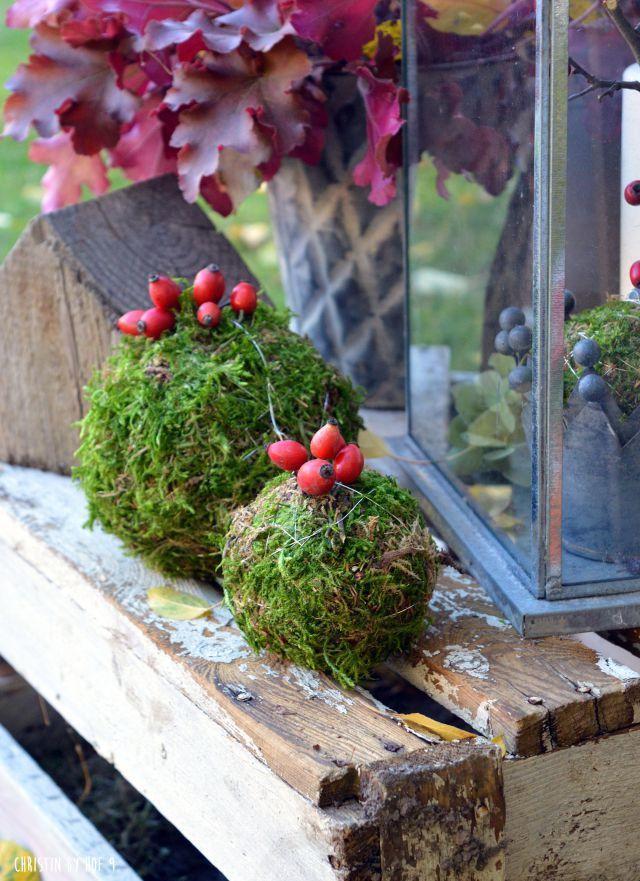 Hof 9   ein Gartenblog in dem ein Fachwerkhof saniert wird ...