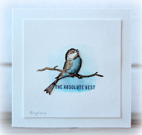 CAS266 Blue Bird by Biggan - Cards and Paper Crafts at Splitcoaststampers