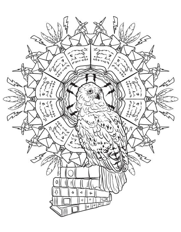 Pin By Debbie Lynne On Kloee Harry Potter Coloring Pages Harry