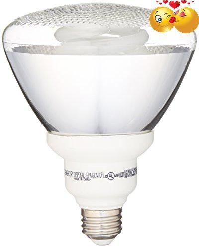Ge lighting 47483 energy smart cfl 26 watt 100 watt replacement bestdeal the ge energy smart indooroutdoor floodlight cfl s feature a workwithnaturefo
