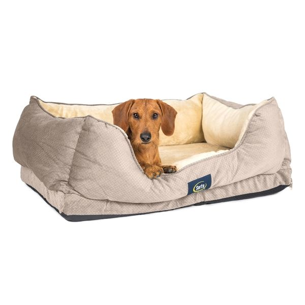 Serta Cuddler Dog Bed Buy It Now Http Amzn To 2b1uf4z Orthopedic Dog Bed Dog Bed Buy Orthopedic Pet Bed
