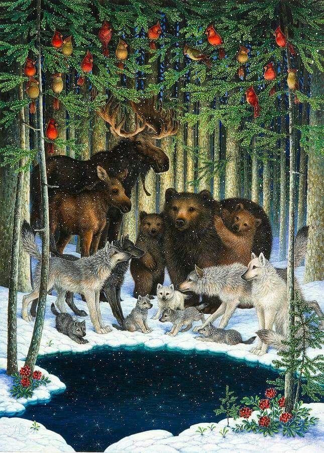 Nice for Christmas