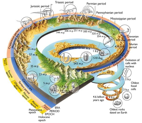 Earth Science/Social Human Science/Earth's History and Evolution ...