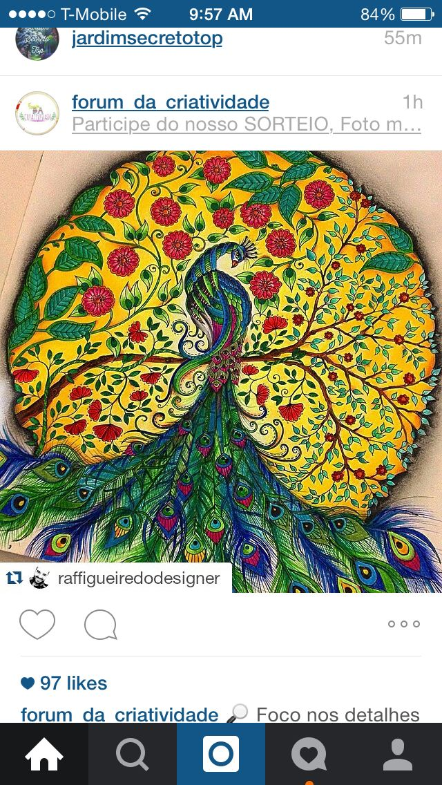 Secret garden/ enchanted forest Secret garden coloring
