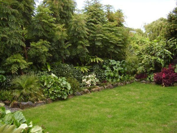Landscaping Evergreen Trees For Privacy : Garden privacy fence evergreen plants shrubs fir trees