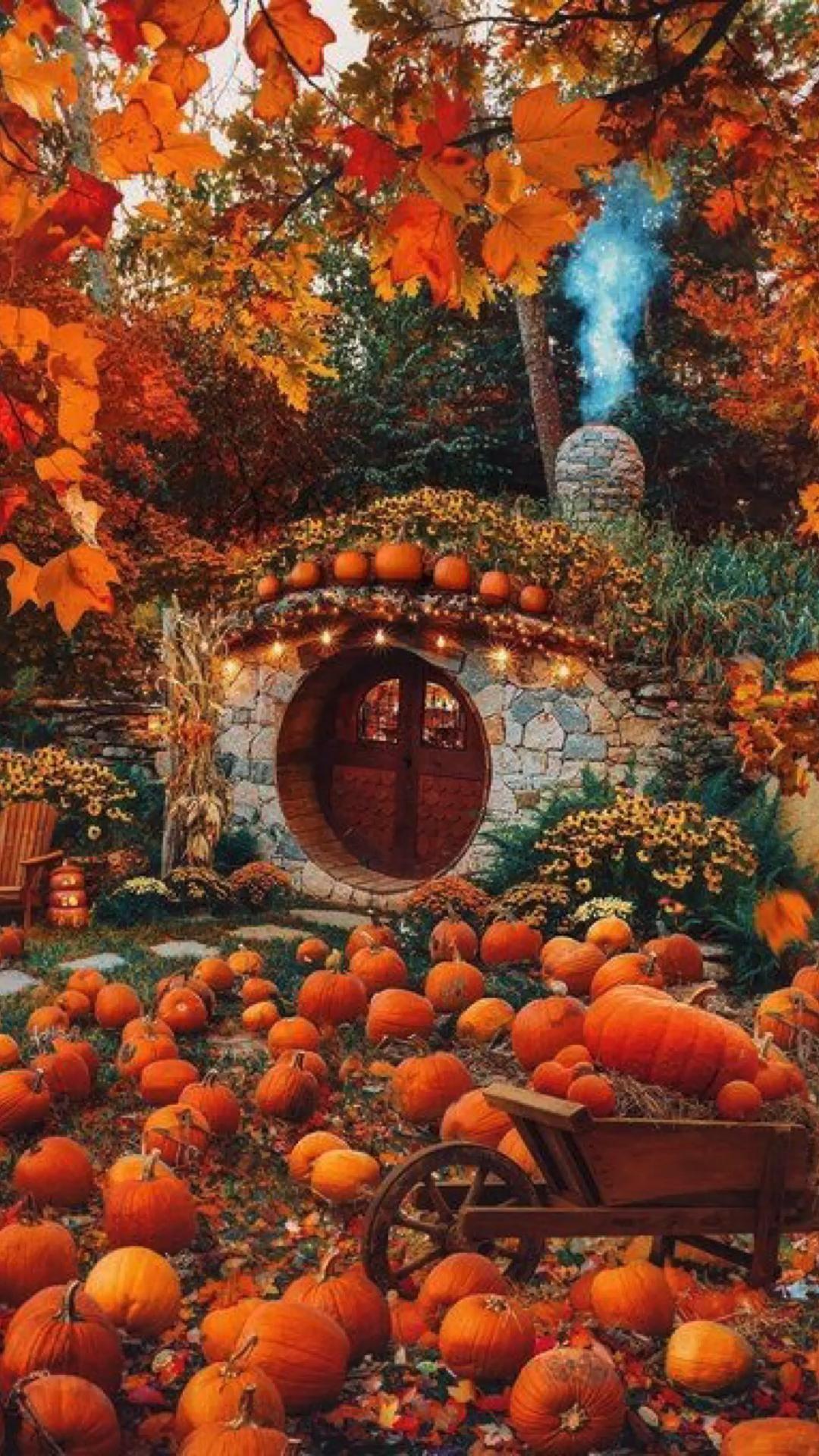 more fall stuff