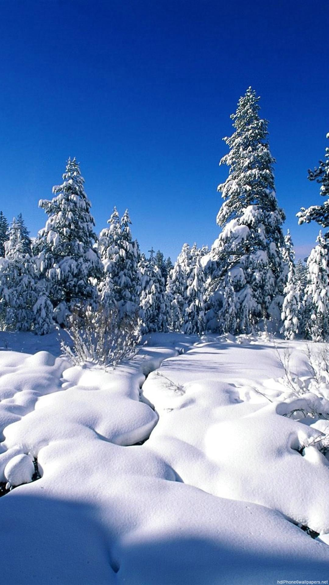 Winter Nature IPhone 6 Wallpapers HD And 1080P Plus
