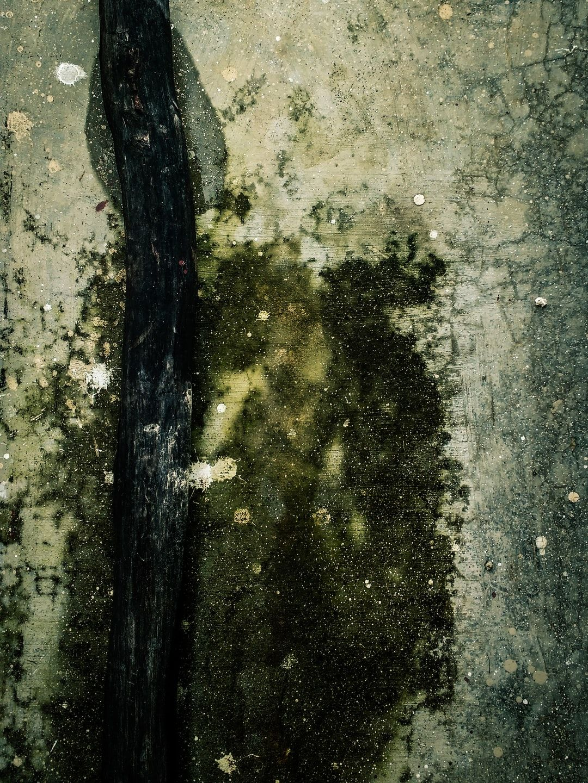 Mylands Borough Market Nr 38 5l Holz Metall Matt Lack Matt Schwarze Malerei Abstrakt Seidenmatt